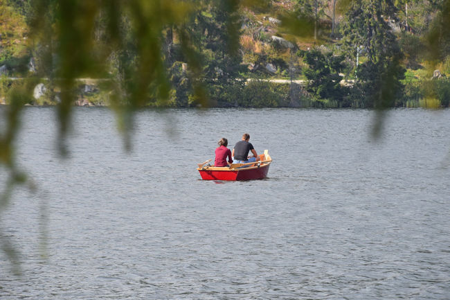 Couple boating at Strbske Pleso (Štrbské Pleso) mountain lake in Vysoke Tatry (High Tatras) mountains, Slovakia Alone Beauty In Nature Boat Boating Couple Getting Away From It All Leisure Activity Lifestyles Nature Pull Remote Row Sailing Scenics Strbske Pleso Tatra Mountains Tatry Together Togetherness Tranquil Scene Tranquility Tree Vacation Water Waterfront