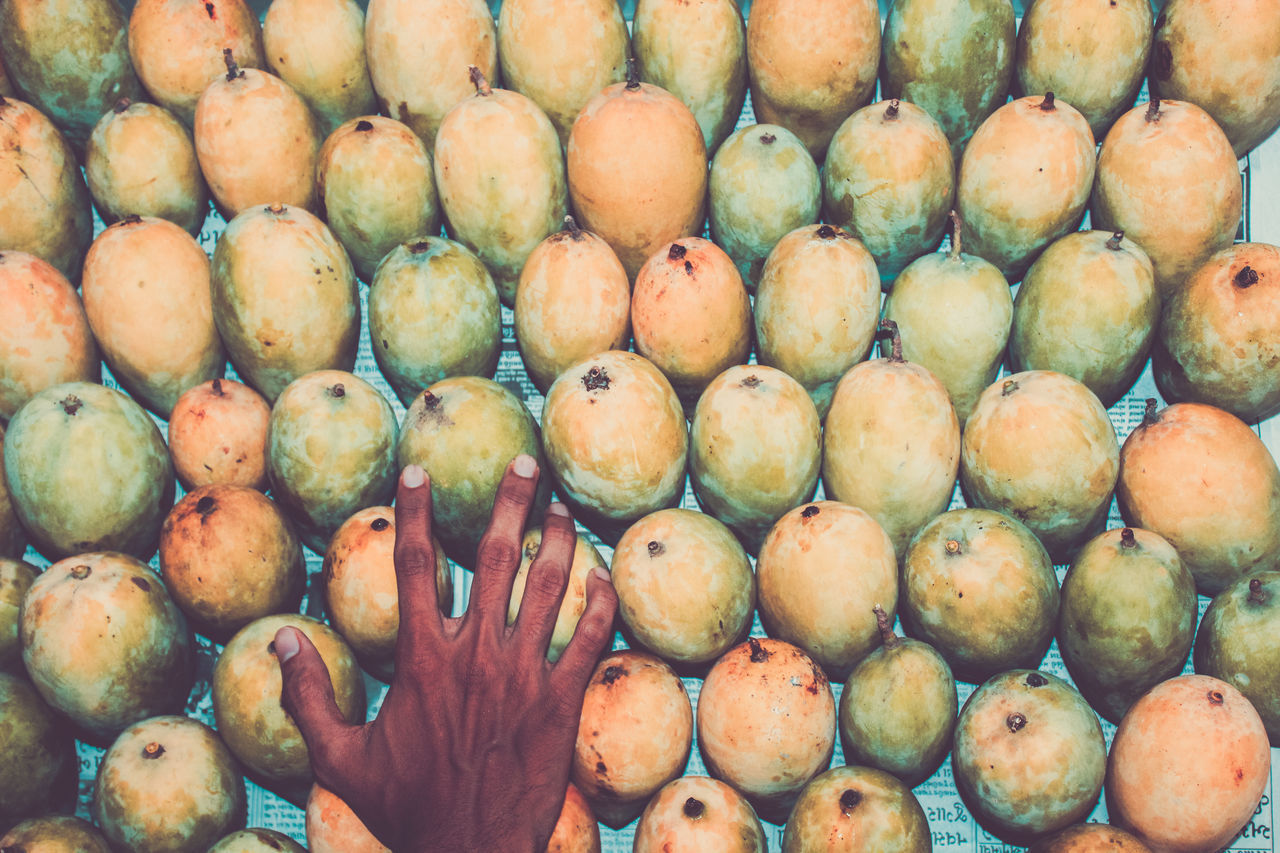 Backgrounds Body Part Close-up Consumerism Day Food Food And Drink For Sale Freshness Fruit Full Frame Healthy Eating Human Body Part Human Hand Indian Mango Large Group Of Objects Mangoes Market One Hand Outdoors Pattern Real People Retail  Supermarket