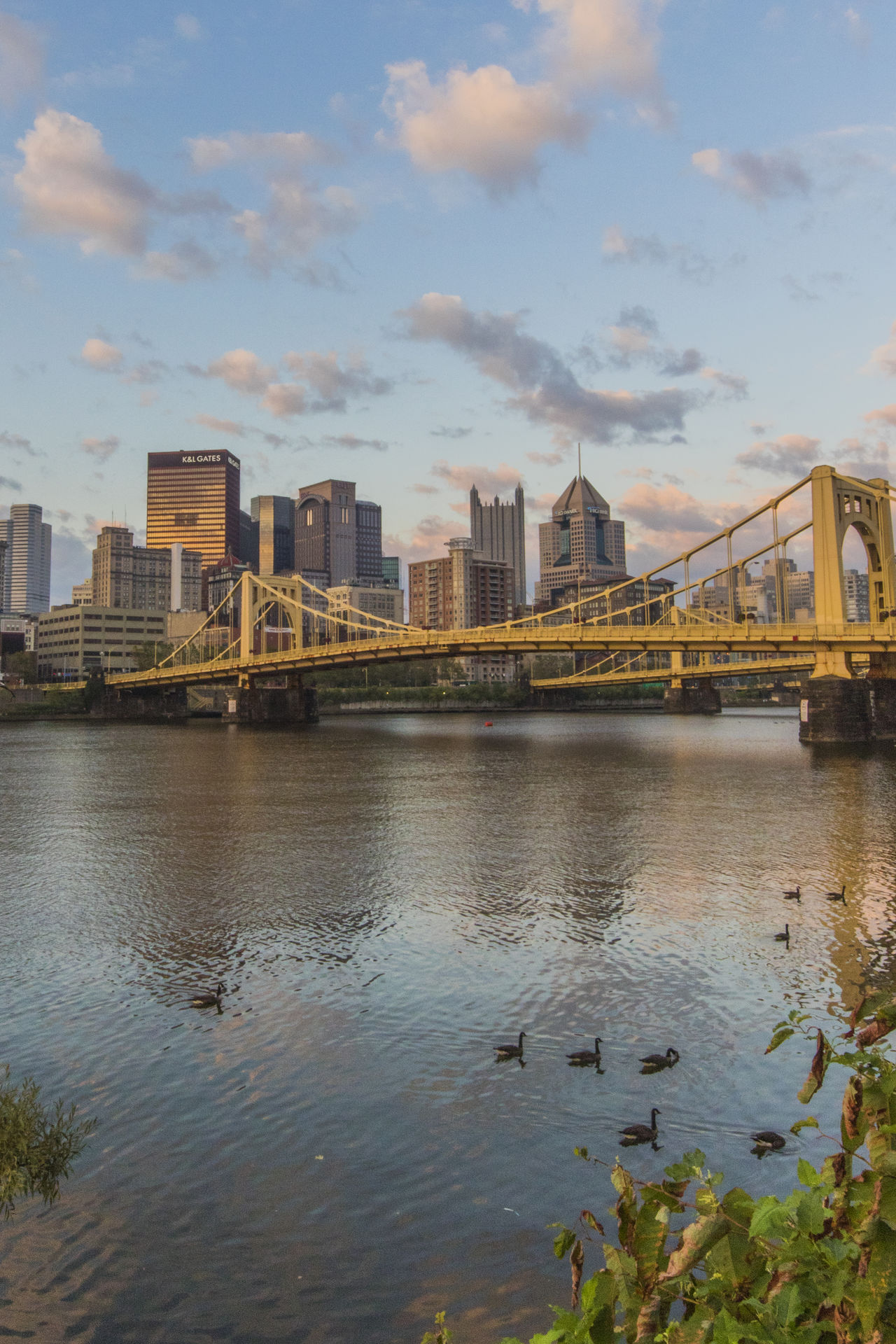 Pittsburgh The Architect - 2016 EyeEm Awards River View Ducks Bridge Cityscapes Tranquil Scene Allegheny River City View  Landscape_photography Urban Exploration Urban The City Light