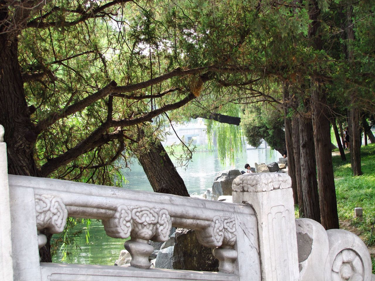 Architectural Column Art Day Grass Green Color Growth Mammal Nature No People Outdoors Park Plant Sky Tranquility Travel Destinations Tree Tree Trunk Water Nature's Diversities Old Summer Palace China Beijing Feel The Journey Original Experiences