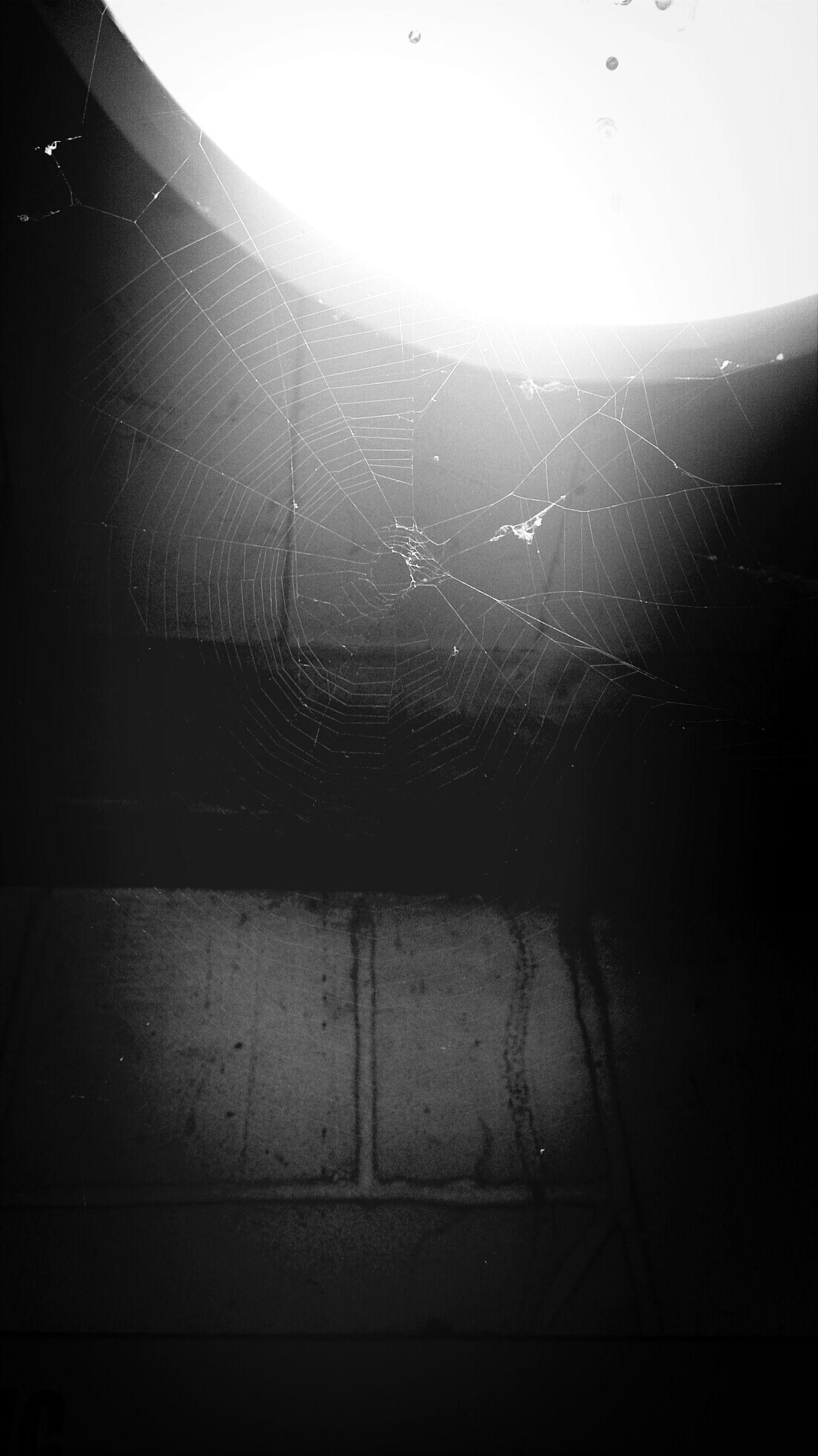 ความน่ากลัวในมุมมืด