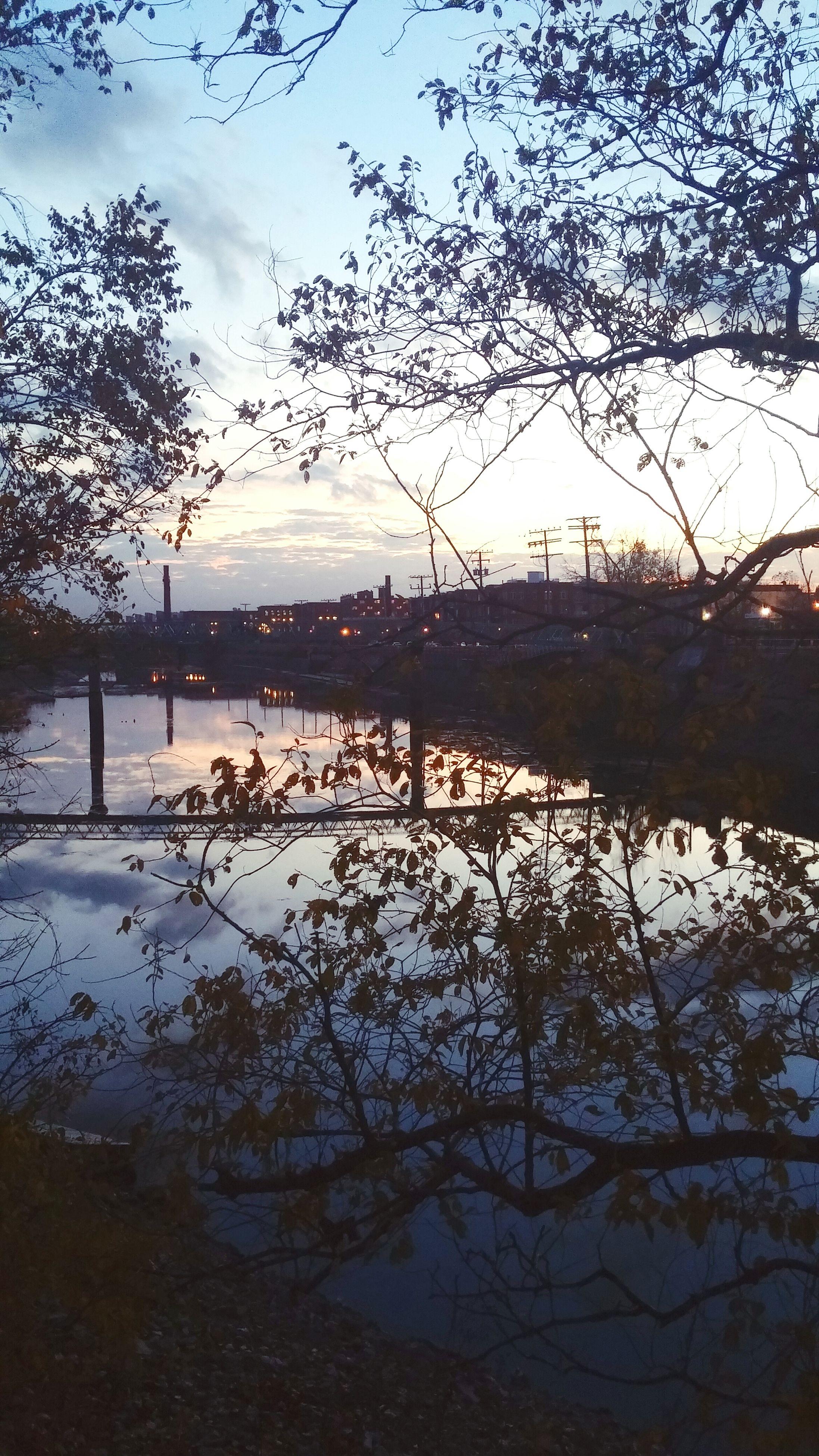 water, tranquility, tranquil scene, scenics, sky, tree, beauty in nature, nature, lake, branch, sunset, silhouette, reflection, bare tree, idyllic, sea, lakeshore, non-urban scene, river, calm