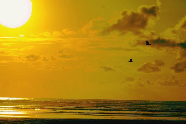Cannon Beach Eclipse Sunset #sun #clouds #skylovers #sky #nature Beautifulinnature Naturalbeauty Photography Landscape [a: OtherMindMedia Waterfront Nautical Taking Photos