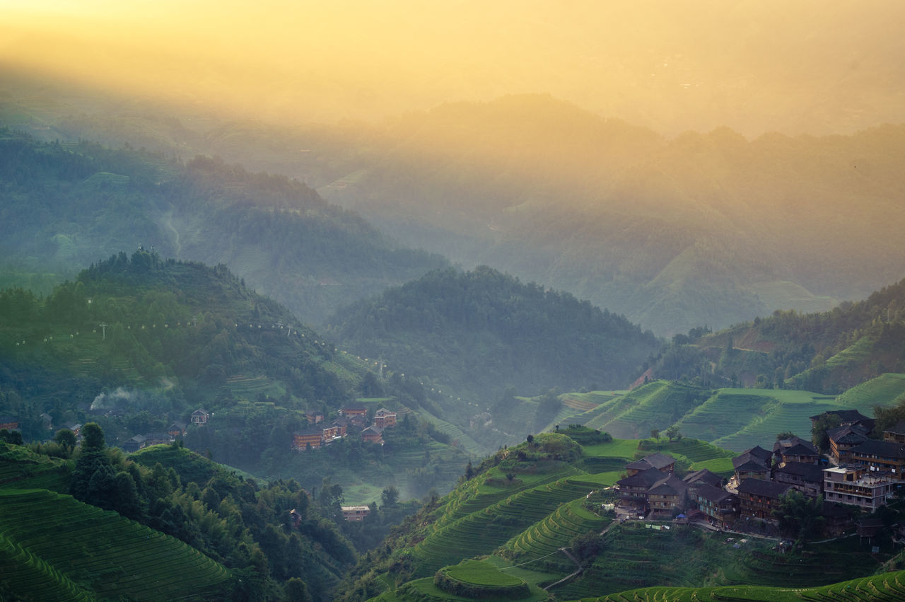 Agriculture Architecture Beauty In Nature Building Exterior Built Structure Day Field Fog Growth Idyllic Landscape Mountain Nature No People Outdoors Rice Paddy Rural Scene Scenics Sky Terraced Field Tranquil Scene Tranquility Tree