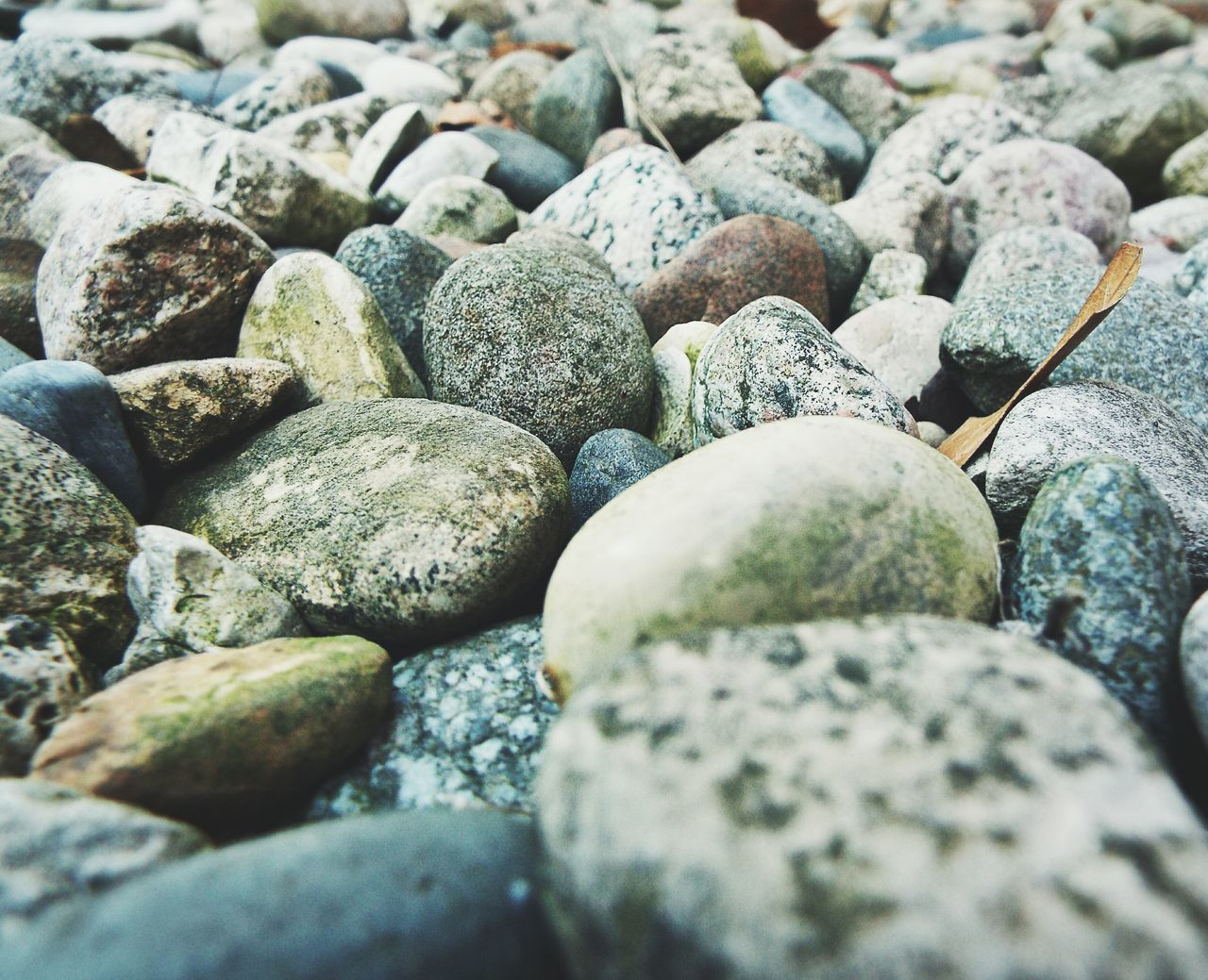 Texture Outdoors Paths Rocks Stones Colors Minerals Viewpoint Angles Of Nature Getting Low