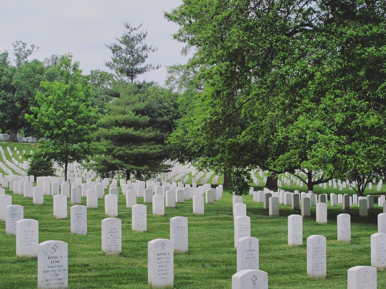 cemetery, tombstone, memorial, gravestone, tree, graveyard, the past, sadness, green color, day, grave, grass, in a row, outdoors, cross, no people, nature