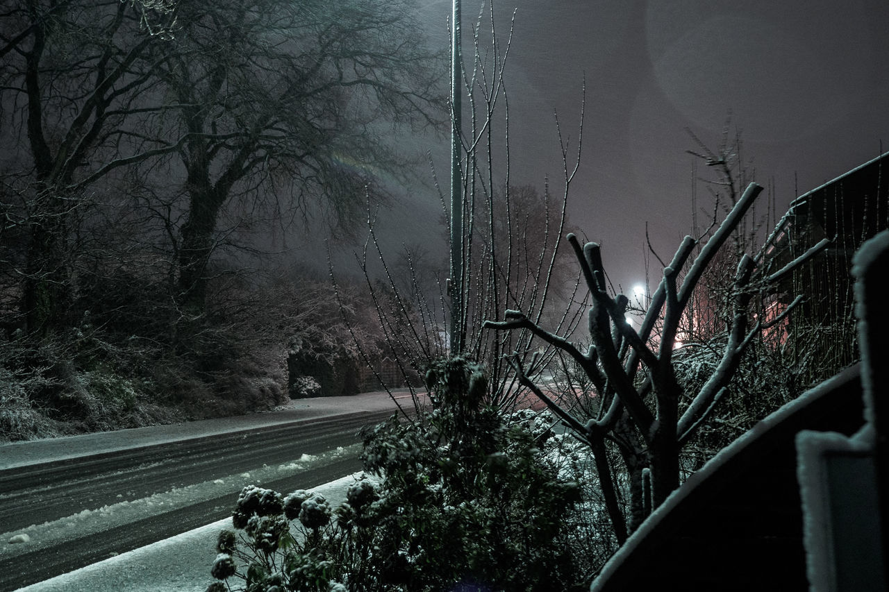 from the middle of the night Lighting Equipment Lights Mode Of Transport Nature Night Nightphotography No People Outdoors Road Sky Snow Snowing Transportation Tree Winter