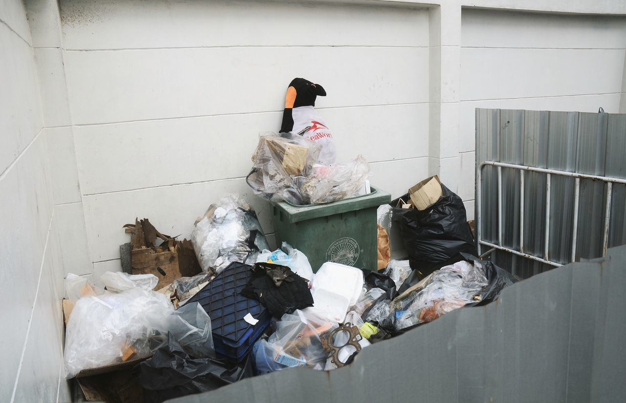 garbage, real people, architecture, mammal, men, one person, domestic animals, built structure, building exterior, day, indoors