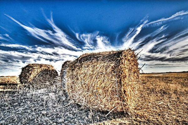 Hay This Week On Eyeem wide angle Texas!!!! Cloudporn Roadside America Fracking