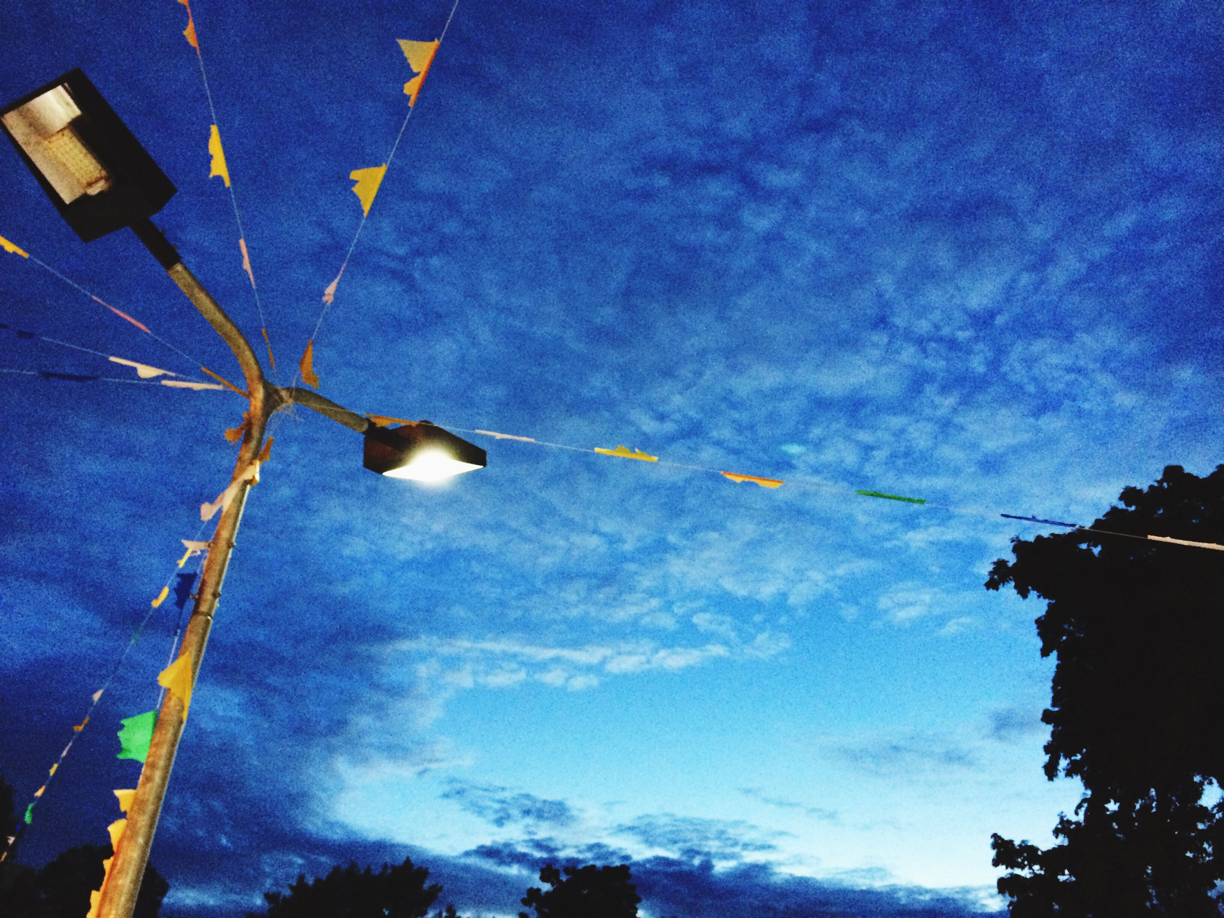low angle view, sky, tree, street light, cloud - sky, blue, nature, high section, cloud, outdoors, lighting equipment, beauty in nature, no people, built structure, day, building exterior, cloudy, branch, growth, tranquility
