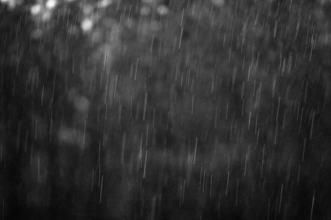 4.26.16 . . Lookslikefilm Liveauthentic Livefolk Naturevibes Nature Naturelovers Nature_perfection Peoplescreatives Visualsoflife AdventureThatIsLife Visualsofearth Atothe Filmemulation Virginiaphotographer Justgoshoot Exploretocreate Exploremore ExploreEverything Theglobalmoment Getoutandphoto Blackandwhite Monochrome Rain RainyDay