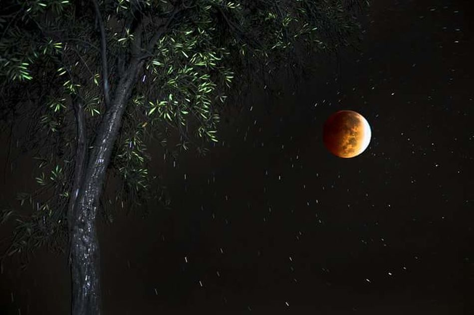 Superimpose Bloodmoon Photoshop Long Exposure Nightphotography Sky