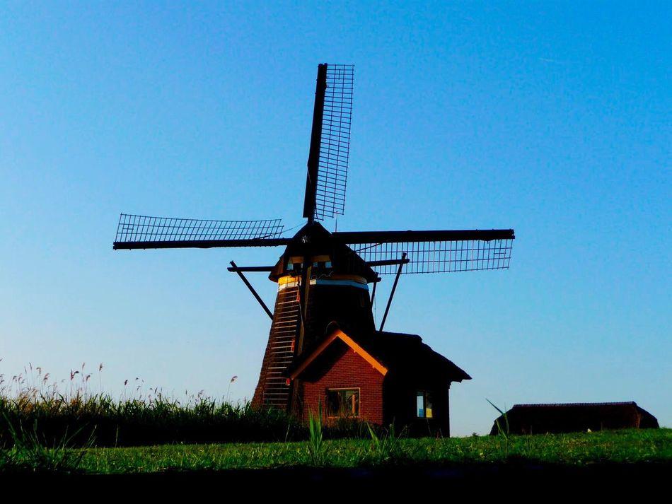 Minimalist Architecture Windmill Traditional Windmill Moulin Molen Mill Mills Windmill Wind Mill Windmills EyEmNewHere Dutch Dutch Landscape Dutch Landscapes Dutch Countyside Dutch House Dutchstyle Dutch Architecture Dutch Life Holland Holland❤ Netherlands Thenetherlands Nederland Nederlands