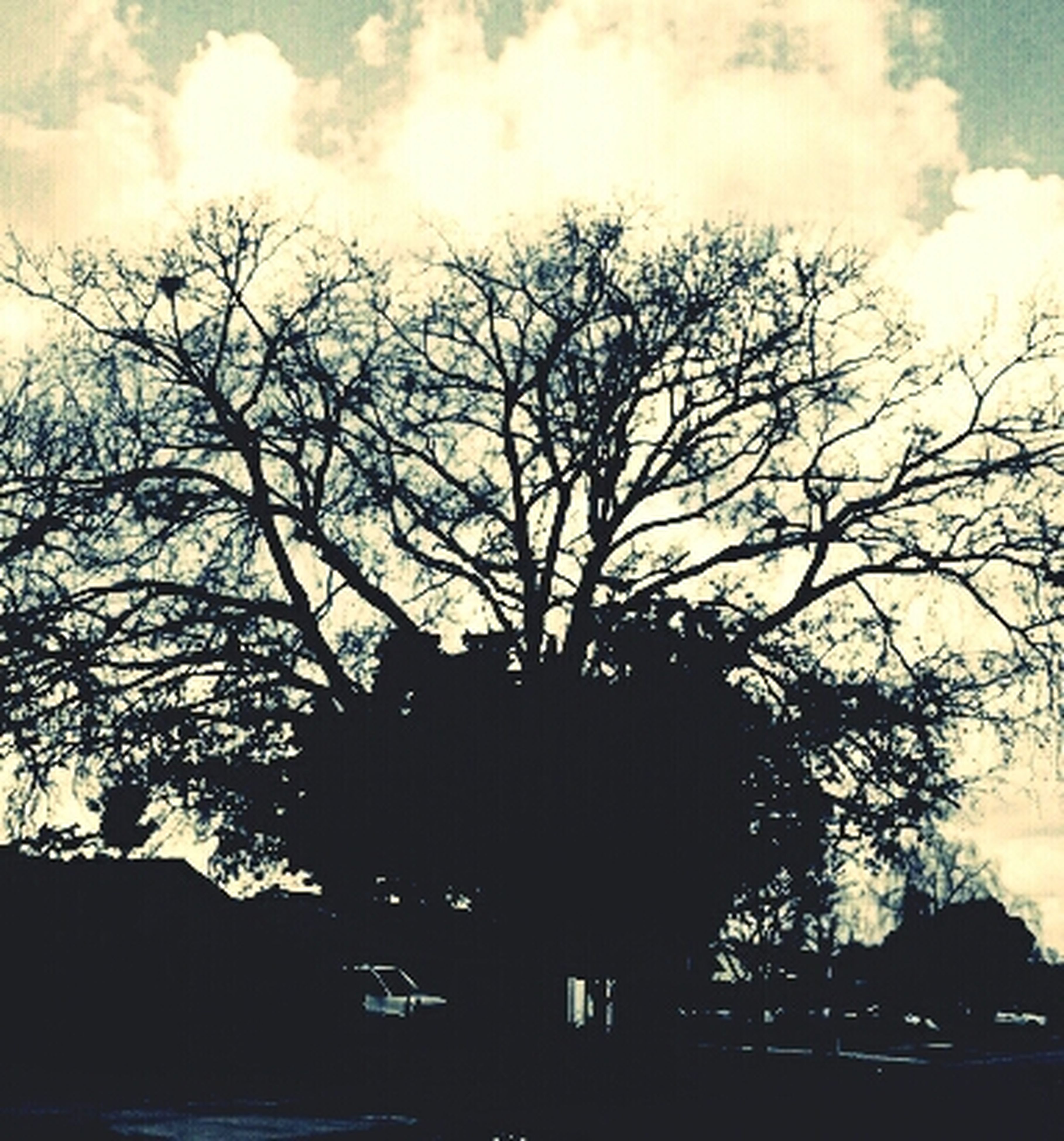 bare tree, tree, sky, silhouette, low angle view, branch, cloud - sky, built structure, architecture, building exterior, cloudy, cloud, dusk, nature, outdoors, no people, tranquility, day, beauty in nature, house