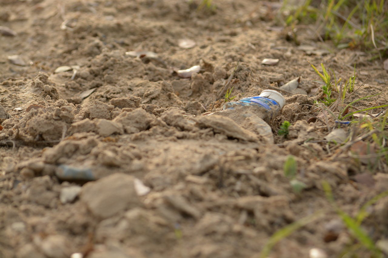 How Do We Build The World? Plastic Bottle Poluted Earth