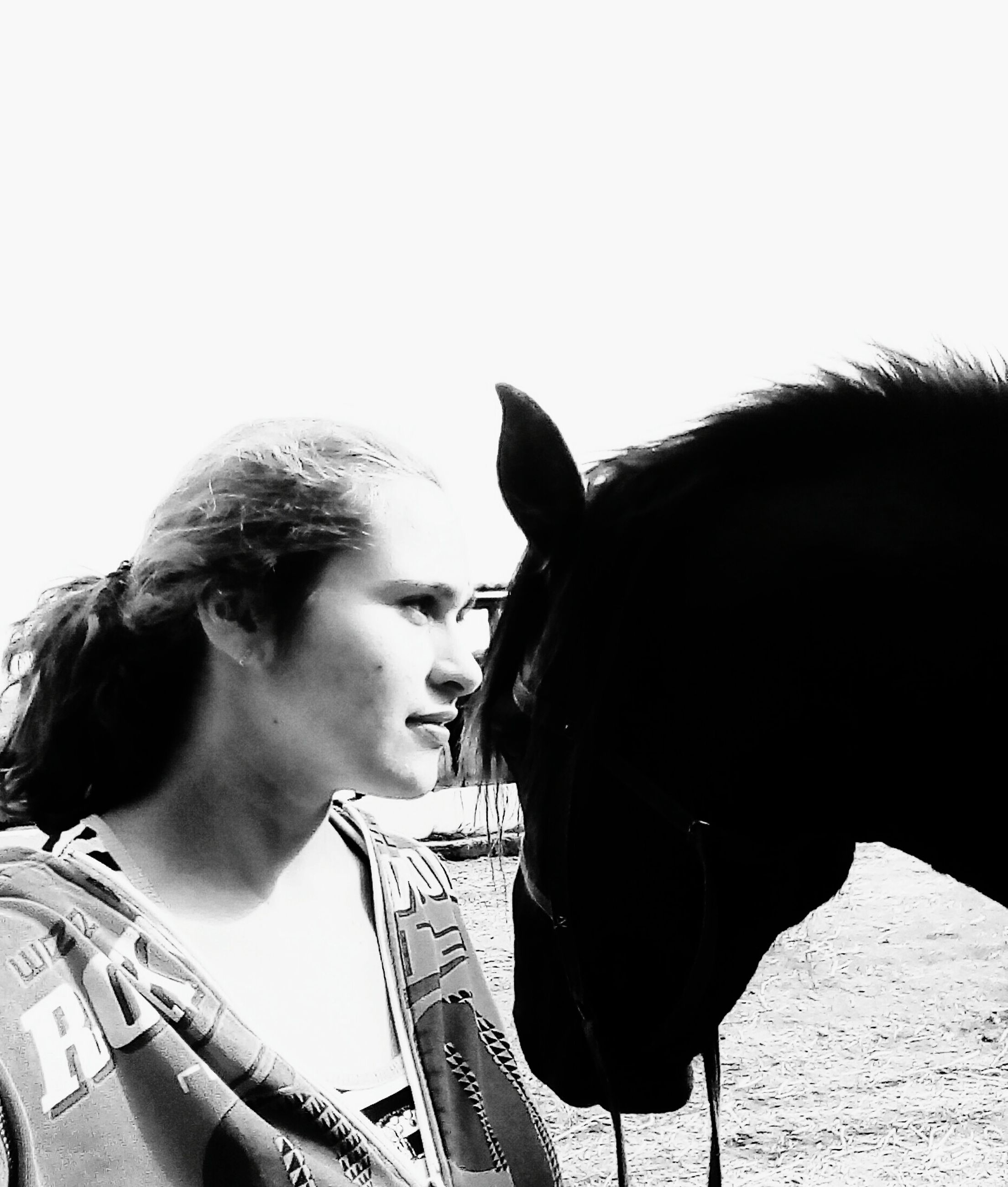 horse, domestic animals, mammal, animal themes, one animal, livestock, day, real people, young women, side view, one person, young adult, outdoors, clear sky