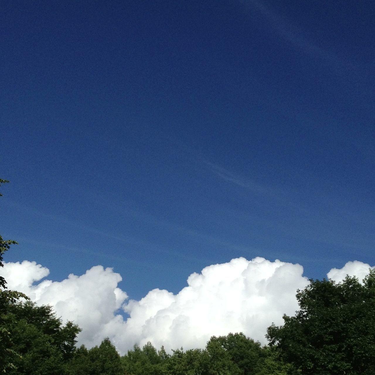 Sky_collection Cloudporn Blue Sky Summer 2013