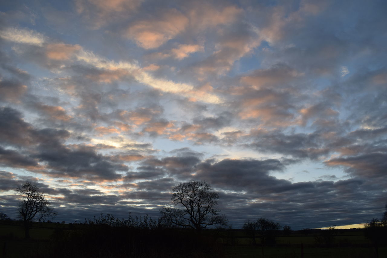 beauty in nature, scenics, nature, tranquil scene, cloud - sky, sky, tranquility, tree, sunset, silhouette, no people, landscape, outdoors, bare tree, day