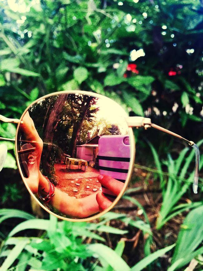 Hello Nature IPhoneography Ile D'Oleron Nature Holidays ☀