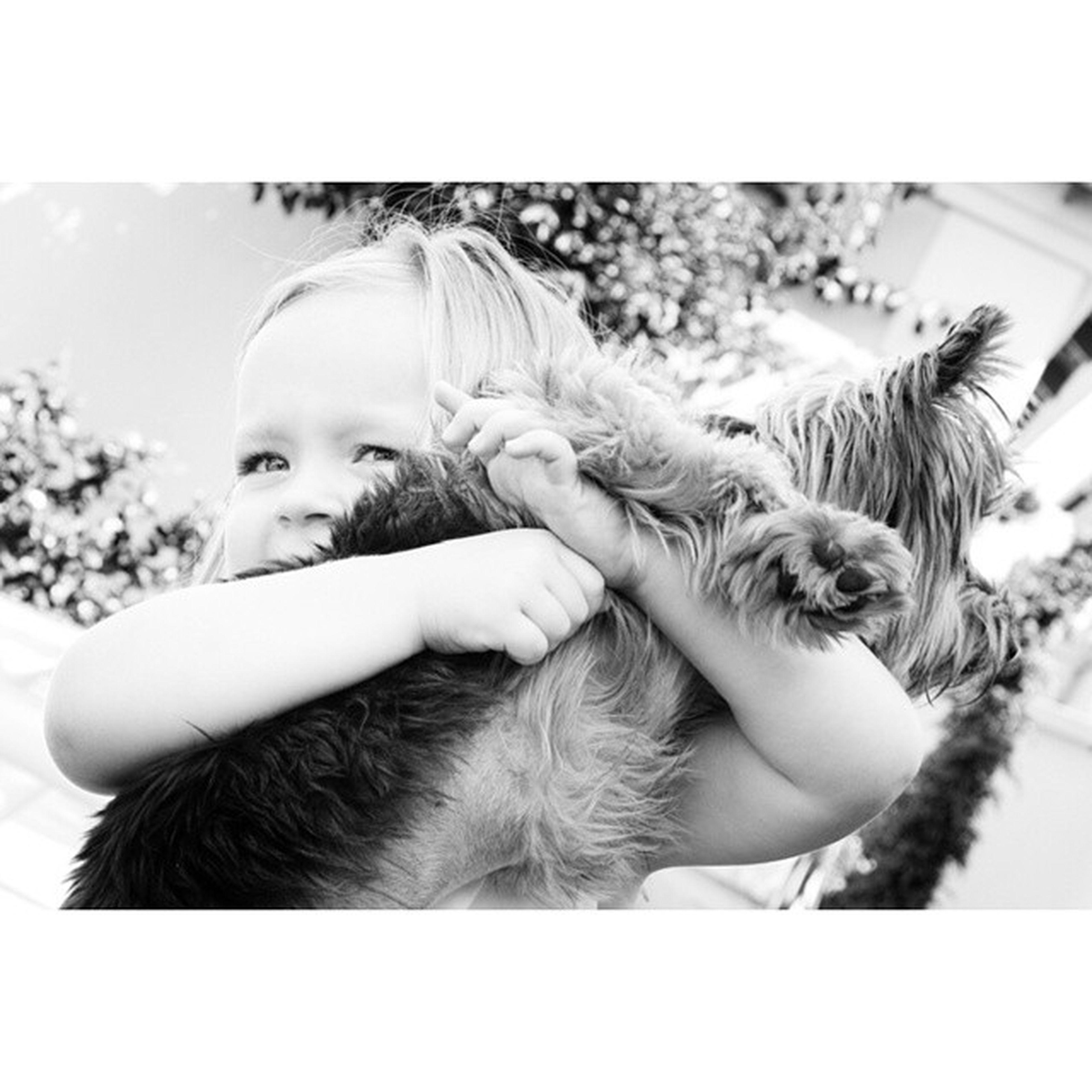 Puppy Love ... Emma EmmaTurns3 Blackandwhite Friends petsOfInstagram cuddles hugsForDays goodCompany goodTimes birthday partyTime inTheMoment realLife