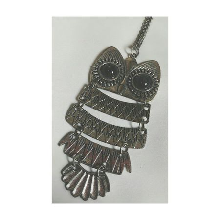 An old owl necklace Necklace Owl Vscocam VSCO
