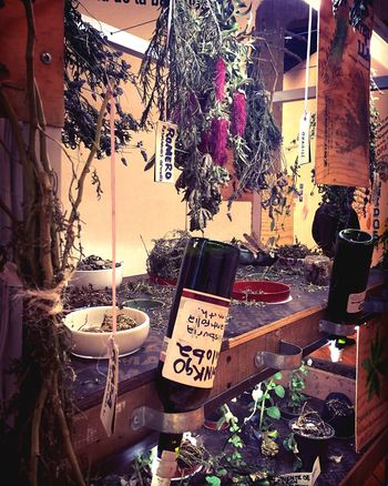 Hierba Text Outdoors Communication No People Day Curandera Yerba Iphone6 Medicine Medicinal Plant IPhone Photography Amateurphotography Photooftheday IPhoneography Mexico City Cdmx Magic