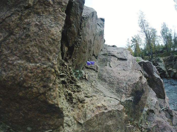 Flower in stone quarry, Dalby Sweden Rock - Object Only Men Outdoors Nature One Man Only Textured  Day Landscape Men Tree Adventure Beauty In Nature Rock Climbing One Person Adult People sweden No People Sweden-landscape Sweden Nature Scenics Tranquility Beauty In Nature
