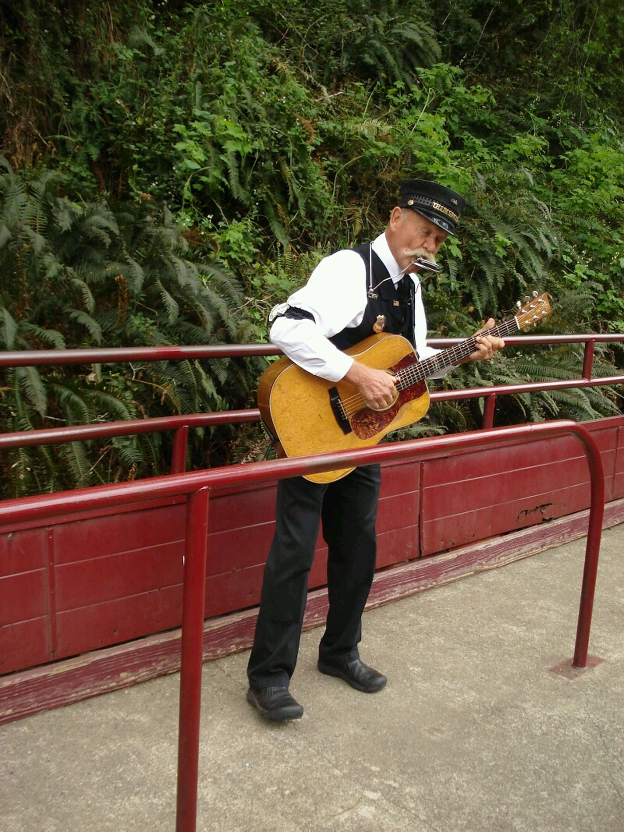 Music Arts Culture And Entertainment Musical Instrument Skunk Train Willits California To Fort Bragg California Playing Music Train