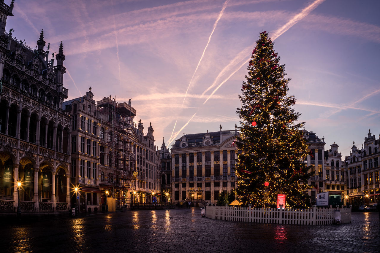 Christmas Tree at Brussels Grand Place at Sunrise Brussel Building Exterior Christmas Christmas Decoration Christmas Lights Christmas Tree City Cityscape Grand Place Grand Place Bruxelles Holiday - Event Illuminated Morning Morning Sky Sunrise