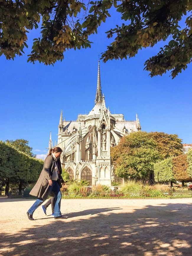 Have a great Sunday! Bon dimanche Clear Sky Architecture Sunny Autumn EyeEm Best Shots Autumn Leaves Parisweloveyou Paris Eyem Best Shot - Architecture Photooftheday Paris ❤