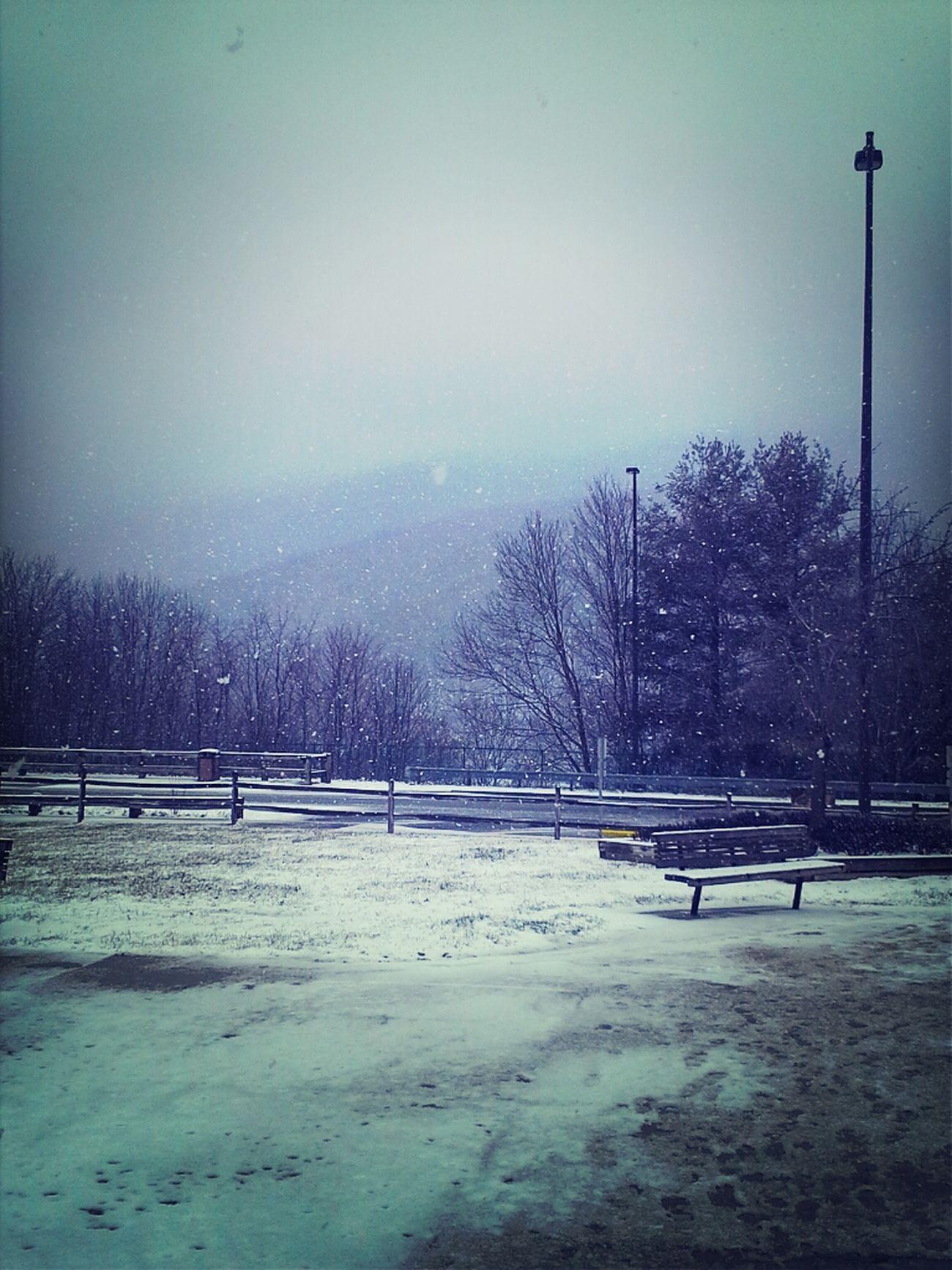 Wheres spring?