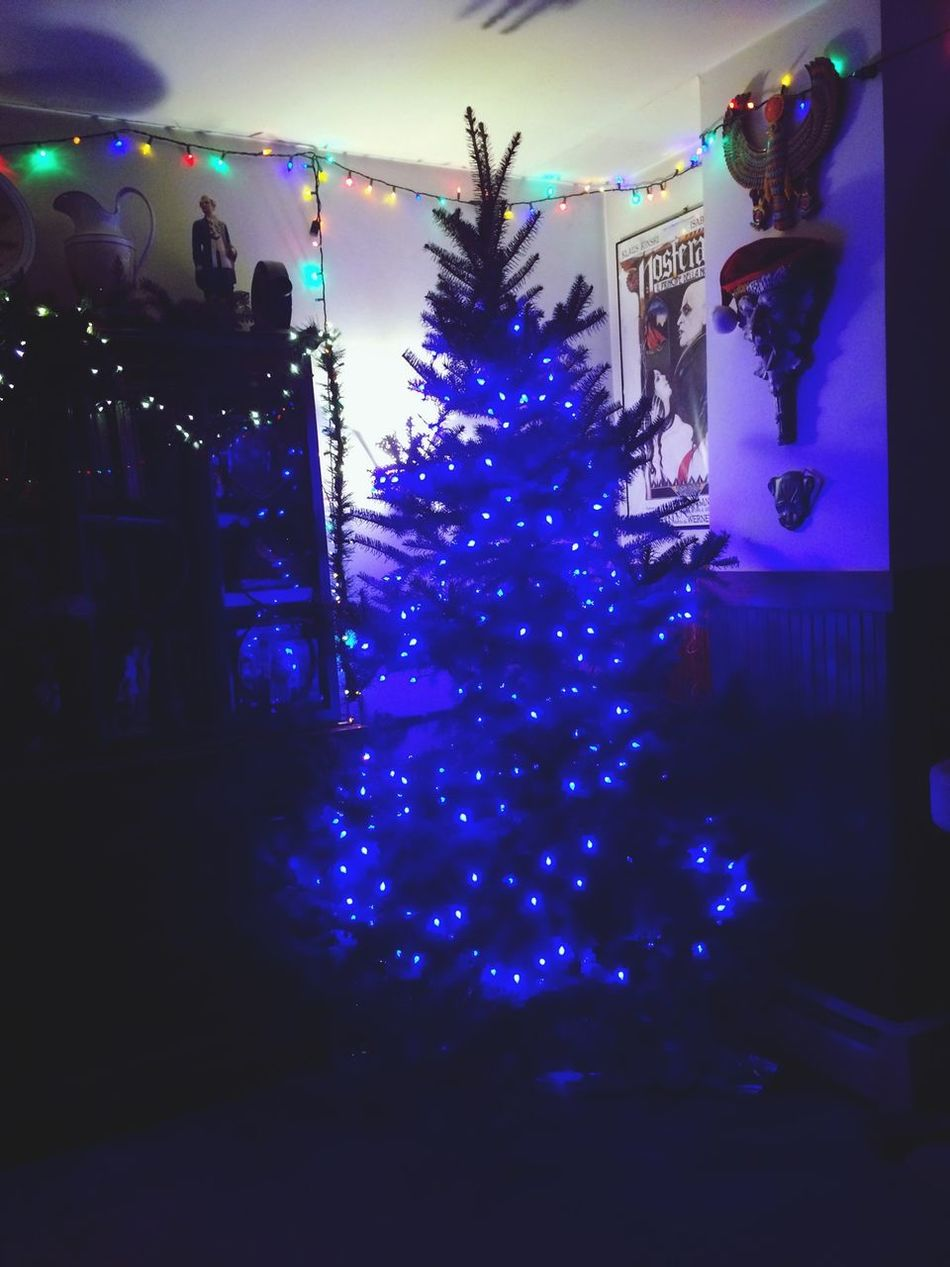 tree almost done ?we need more lights!!
