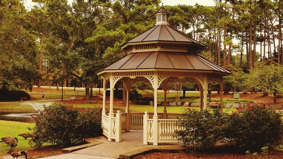 Gazebo Gazebo At The Park Freegazebo Gazebo Life Park,gazebo At The Park Parklife A Walk In The Park North Carolina