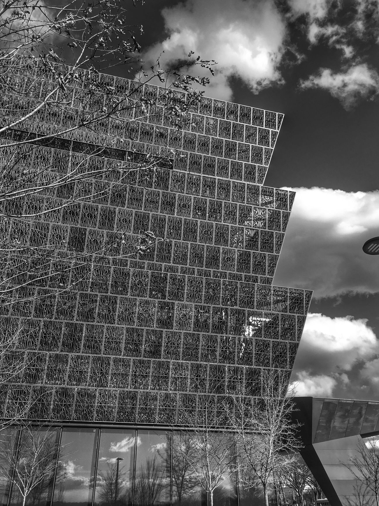 Architecture Tree Streetphotography Bw_collection Monochrome The City Light Blackandwhite Bnw From My Point Of View AfricanAmerican  Museum