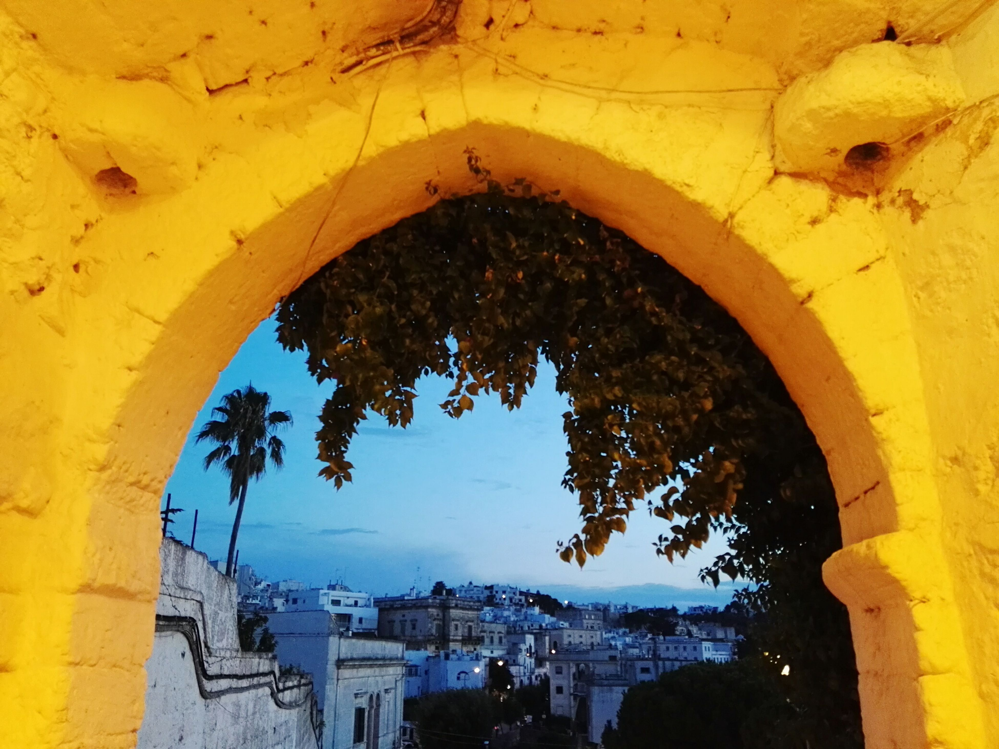 arch, built structure, architecture, tree, travel destinations, architectural column, deterioration, sky, architectural feature, outdoors, blue, day, damaged, archway, arched, medieval, tourism, no people, history, spanish culture, famous place