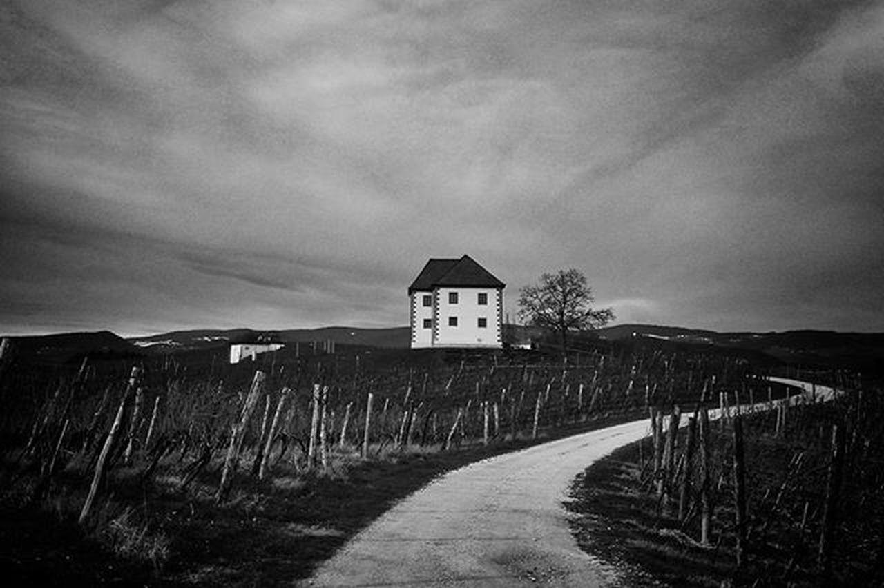 Monochrome Blackandwhite Road Vineyard Zlatigric Zlatigric💚 Lonelyhouse Lonely House Walk Dramatic XPERIA Sony Picturing Individuality My Best Photo 2015