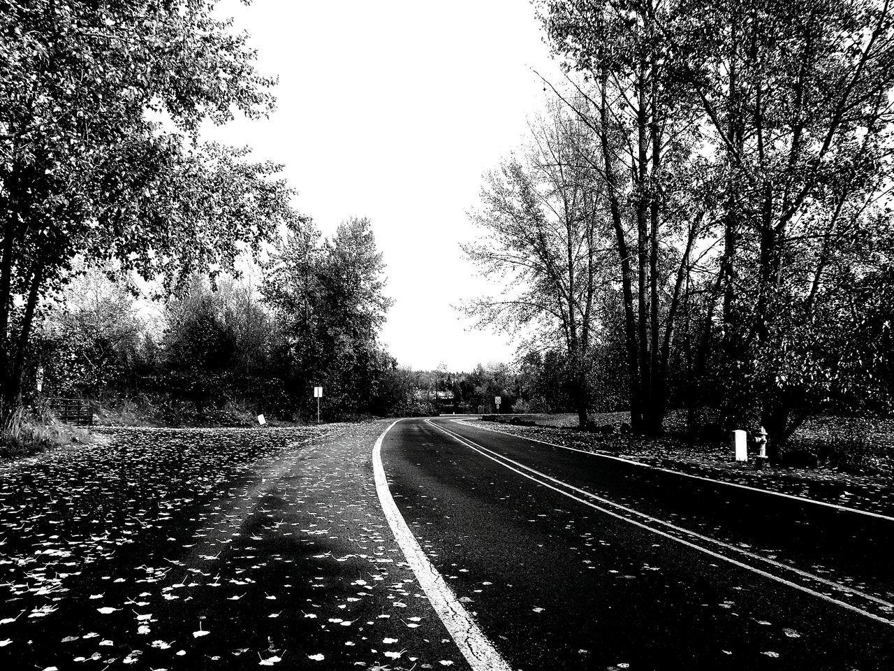 Oregon City Clackamette Park B&w Street Photography