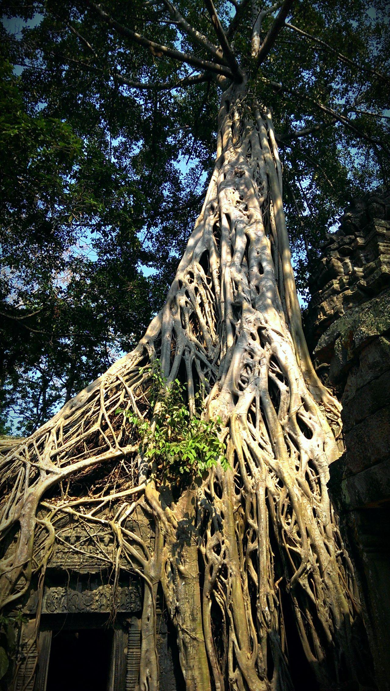 impressive scenery Silvia In Asia Nature