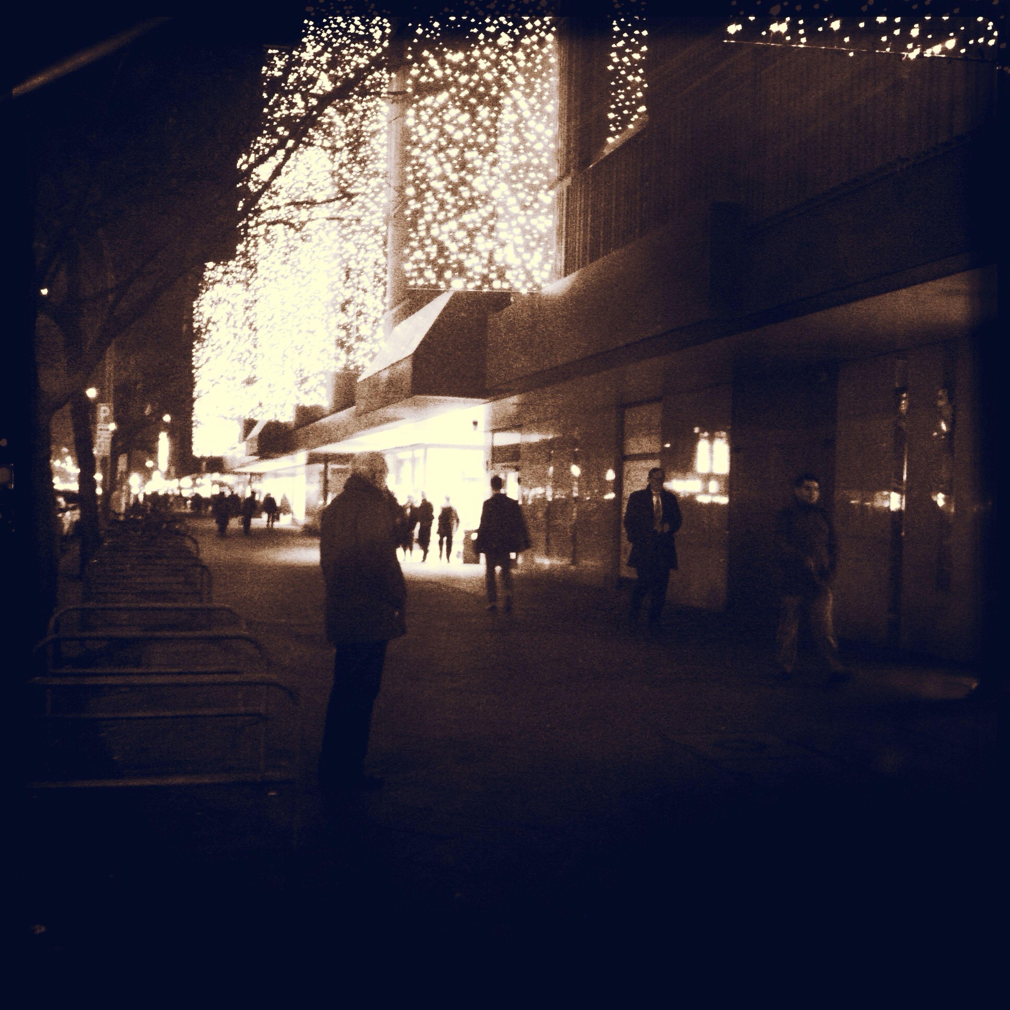 season's lights Season's Lights