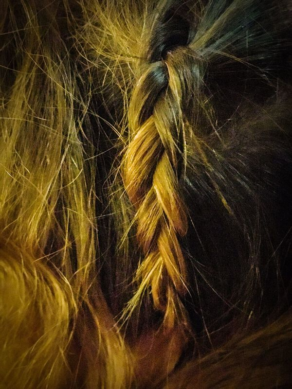 Let Your Hair Down Blonde And Brown Hair Plaited Hair Silky Soft