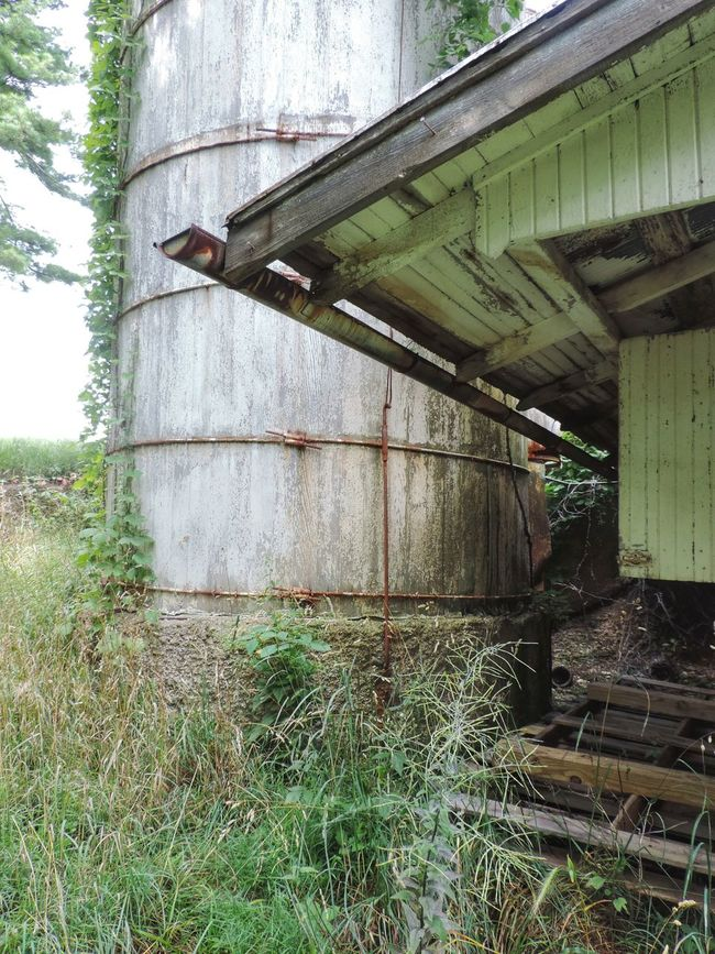 Barn Built Structure Day Deterioration Exterior Grass Growth Nature No People Ohio Old Outdoors Run-down Rural Exploration Rural Scene Rurex
