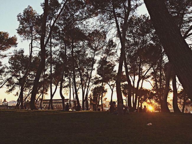 Park SPAIN Taking Photos