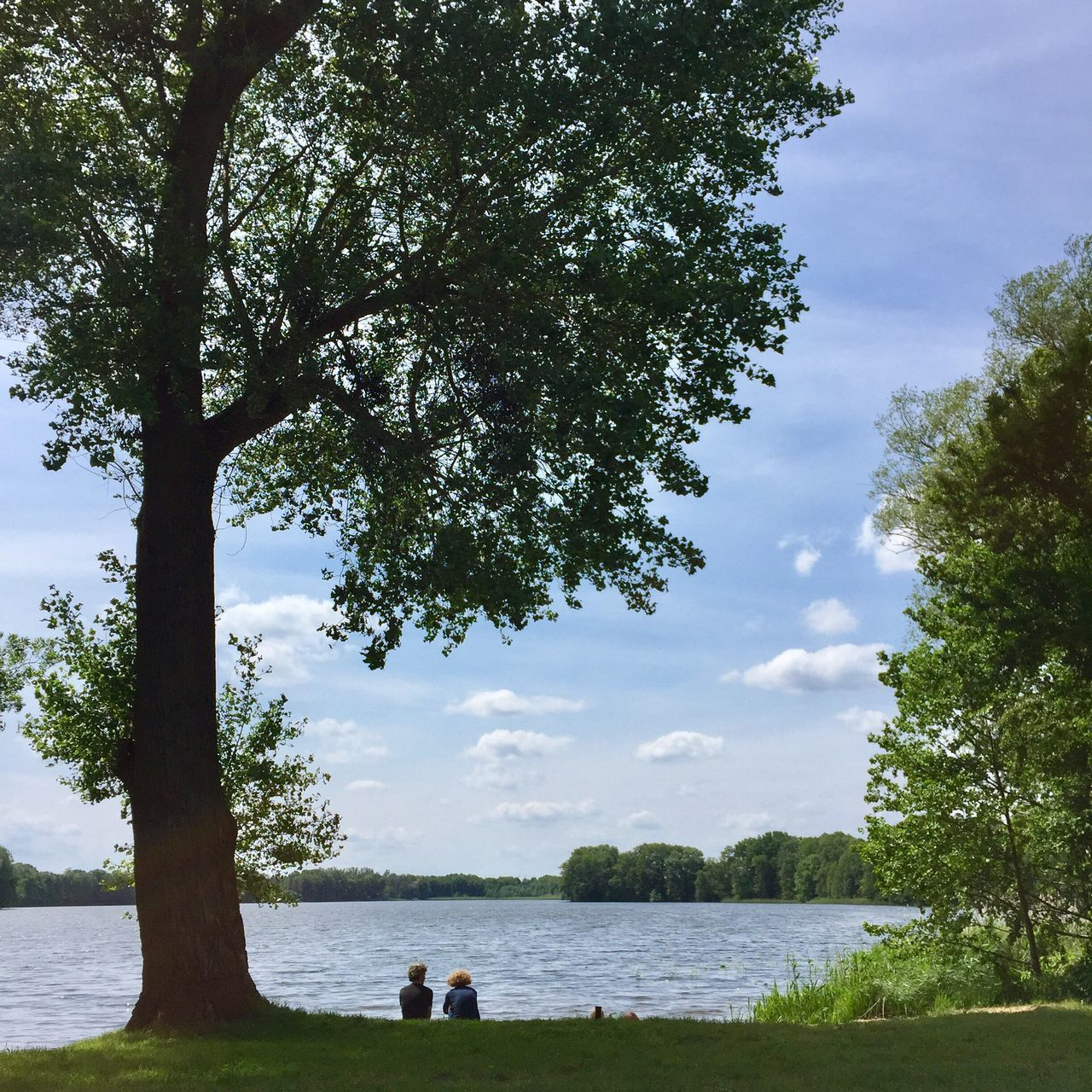 Tree Water Lake Nature Sky Day Tree Trunk Leisure Activity Togetherness Outdoors Beauty In Nature Growth Cloud - Sky Real People Scenics Sitting
