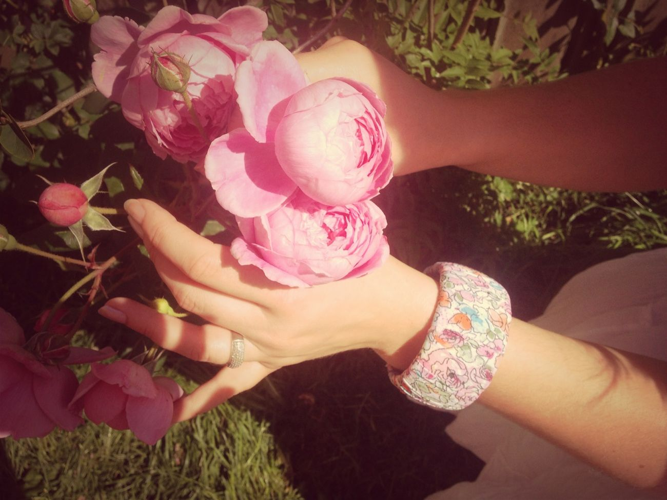 Roses And Bangles