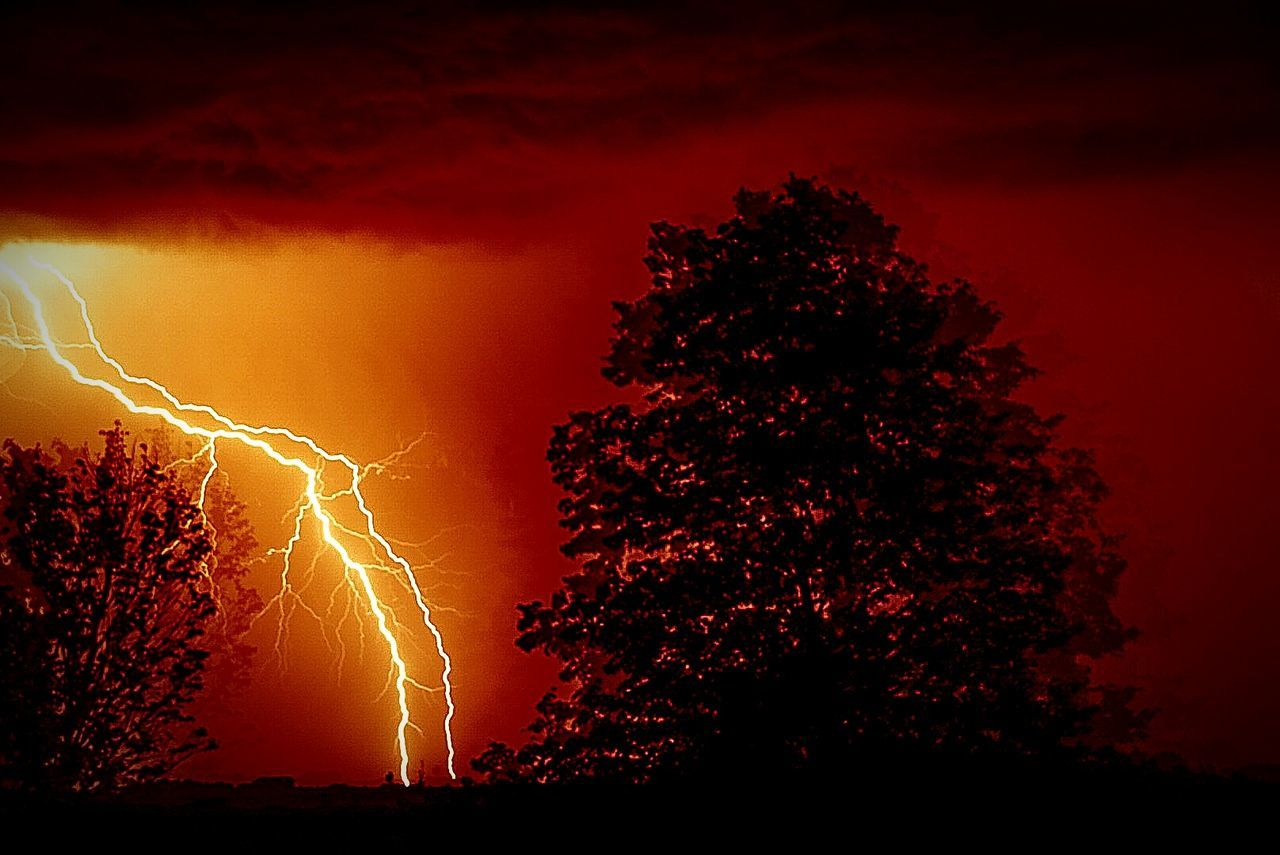 lightning, power in nature, forked lightning, storm, night, dramatic sky, tree, sky, no people, thunderstorm, silhouette, beauty in nature, illuminated, nature, low angle view, outdoors, scenics, storm cloud, sunset
