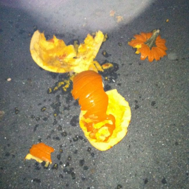 Well I guess it's time for new pumpkins lol this one started to rot already ? so Adam threw it out our kitchen window lmao Shootingpumpkins Boyiscrazy