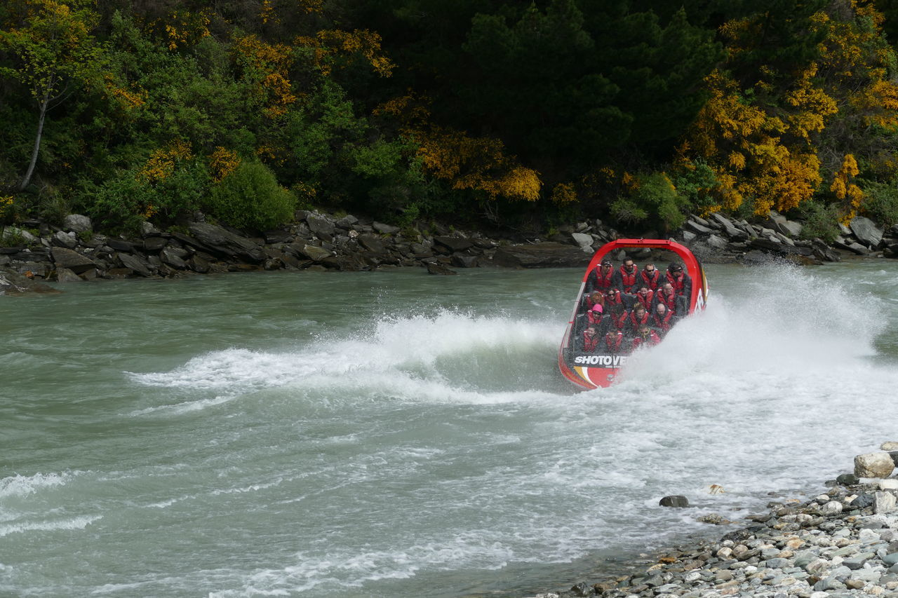nature, water, day, adventure, beauty in nature, tree, outdoors, real people, leisure activity, motion, sport, extreme sports
