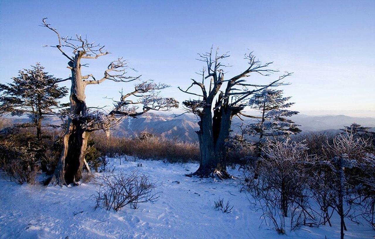 Taebaek mountain First Eyeem Photo Scenery💋 Landscape