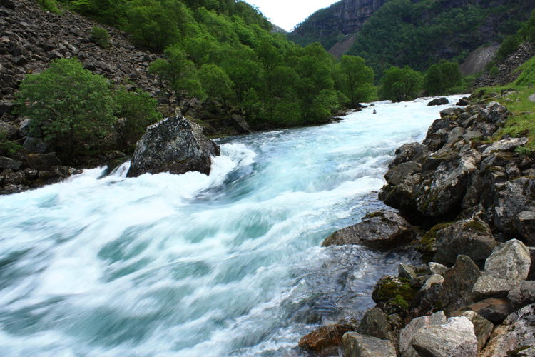 Amaturephotography Beauty In Nature Day Flowing Flowing Water Forest Idyllic Majestic Motion Mountain Nature River Rock - Object Rock Formation Rocks Stream Water Myrdal - Flåm, Sogn, Norway