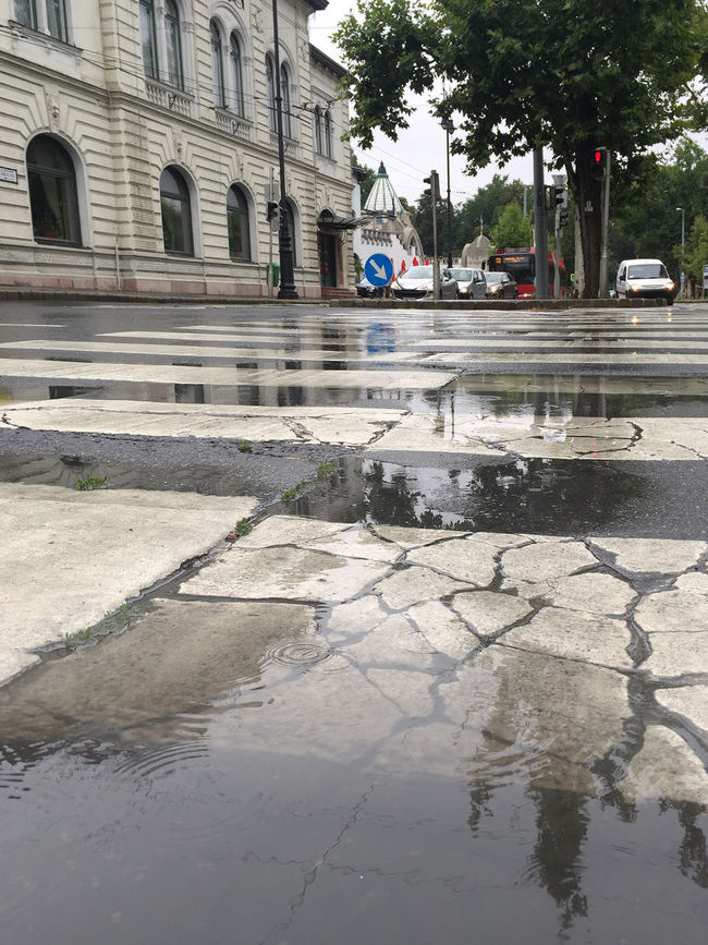 Wet zebra crossing Architecture Building Exterior Built Structure Car City City Life Cracked Day Decazadorapresa Land Vehicle Mode Of Transport No People Old Outdoors Rain Reflection Street Surface Level Transportation Water Weather Werk White
